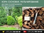 Мульча из сосновой коры в Беларуси