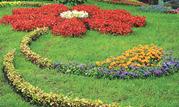 Создание цветников в виде арабесок-монограмм