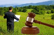 Сопровождение и приобретение на аукционе по продаже земельных участков