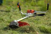 Покос травы,  бырьяна,  кустарников.