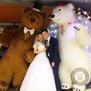 Большие Медведи Панда на Свадьбу,  День рождения,  Юбилей,  Корпоратив
